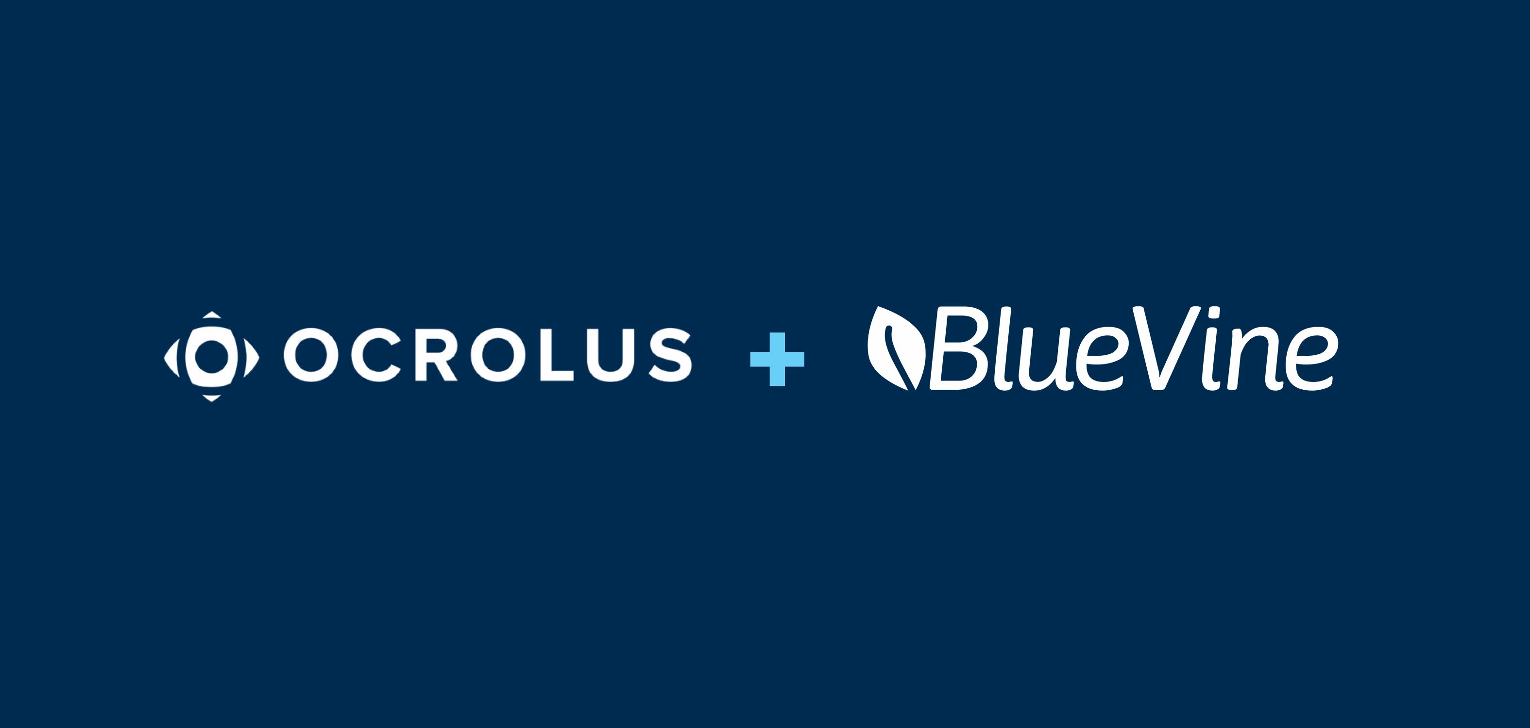 Blog_image_ocrolus Bluevine